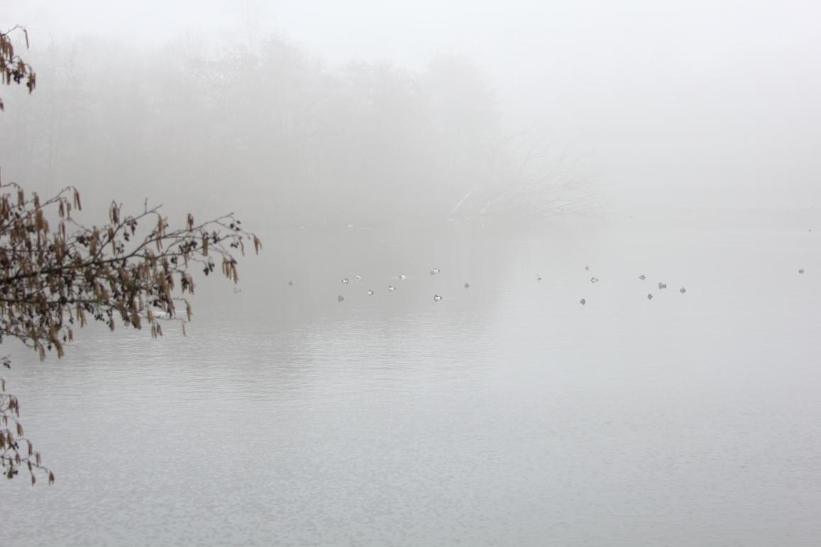 Mist is een Westfries verhaal van Co Schipper